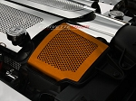 C6 Corvette Base/Grand Sport 2008-2013 Custom Painted Air Capacitor Cover Perforated- 2Pc