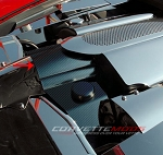 C6 Corvette 2005-2013 Hydro Carbon Fiber Throttle Body Cover