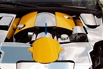 C6 Corvette 2005-2007 Custom Painted Air Tube Cover