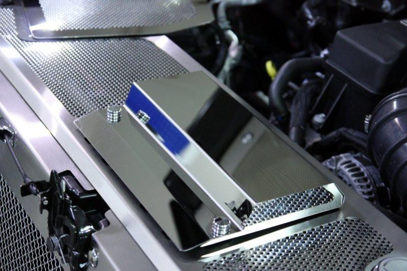 2010 2014 ford raptor perforated brushed stainless steel